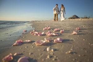Sanibel Island Captiva Marriage Info